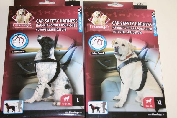 Autosicherheitsgeschirr