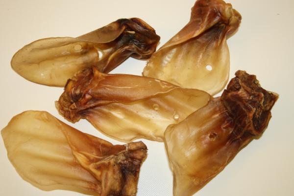 deutsche riesen Rinderohren mit Muschel