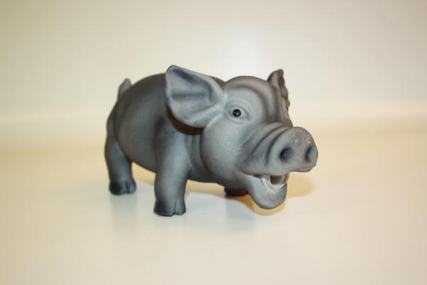 Grunzschwein